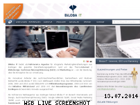 Informationen zur Webseite biloba-it.de