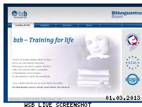 Informationen zur Webseite bzbauer.de