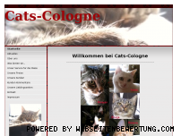 Ranking Webseite cats-cologne.de