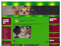 Ranking Webseite chihuahua-welpen.at