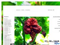 Informationen zur Webseite chili-shop.org