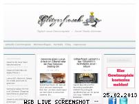 Informationen zur Webseite glitzerfrosch.de