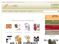 Informationen zur Webseite haefnerwelt.de