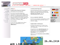 Informationen zur Webseite hagelfix.de