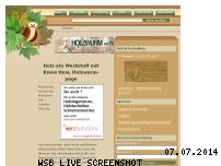 Informationen zur Webseite holzwurm-page.de
