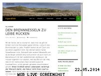 Ranking Webseite irgendlink.de