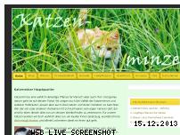 Informationen zur Webseite katzenminze24.de