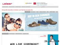 Informationen zur Webseite leiser.de