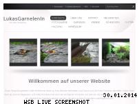 Informationen zur Webseite lukasgarneleninfo.webnode.com
