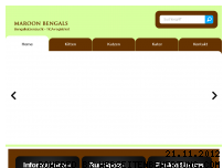 Ranking Webseite maroon-bengals.com