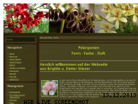 Ranking Webseite pelargonia.de