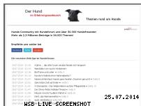 Informationen zur Webseite polar-chat.de
