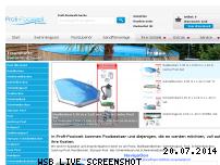 Informationen zur Webseite profi-poolwelt.de