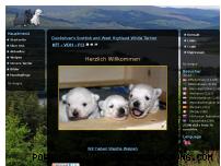 Ranking Webseite quickscot.de