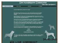 Ranking Webseite sportfordogs.de