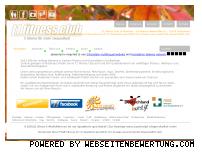 Ranking Webseite t1fitnessclub.de