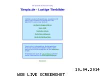 Ranking Webseite tierpix.de